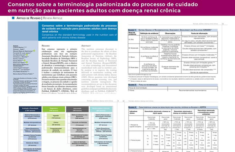 Consenso Terminologia Padronização de Processo cuidado nutrição Renal
